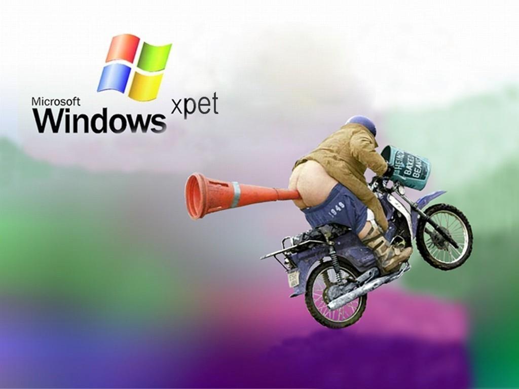 Fond d 39 cran windows xpet photos humour for Fond ecran drole