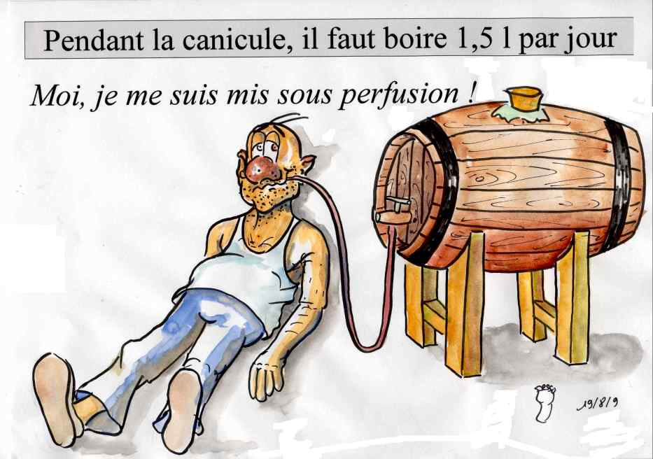 images humour  - Page 7 Canicule