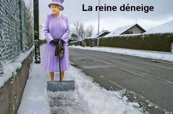 La reine des neiges photos humour - Telechargement de la reine des neiges ...