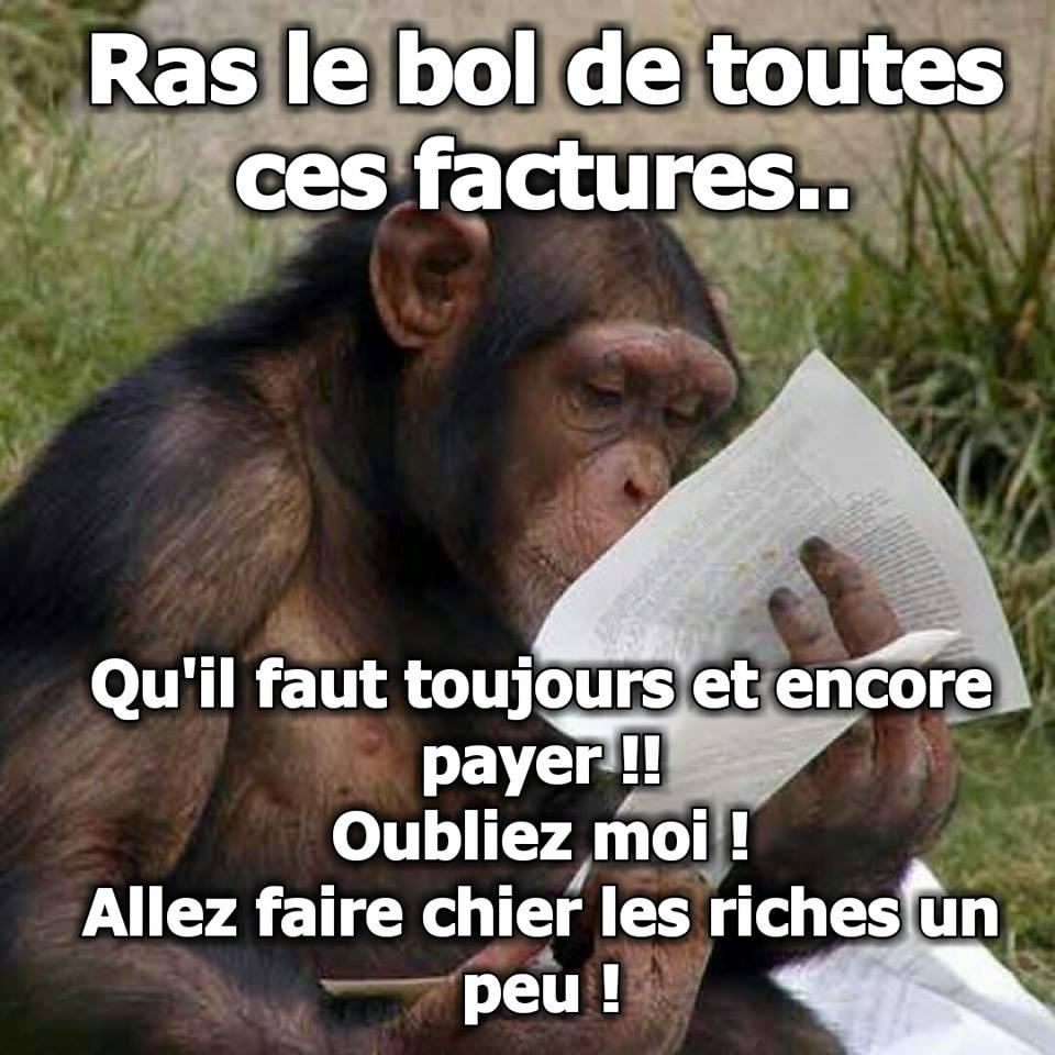 Photos Humour : RAS LE BOL