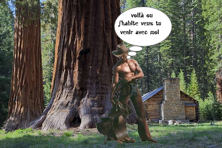 sequoia-exterior-a - Photos Humour