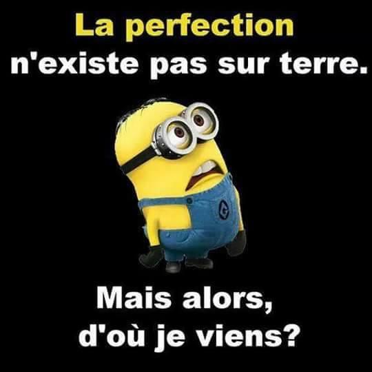 La perfection, n