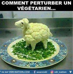 végétarien - Photos Humour