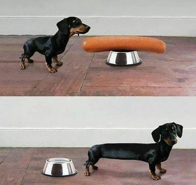 manger - Photos Humour