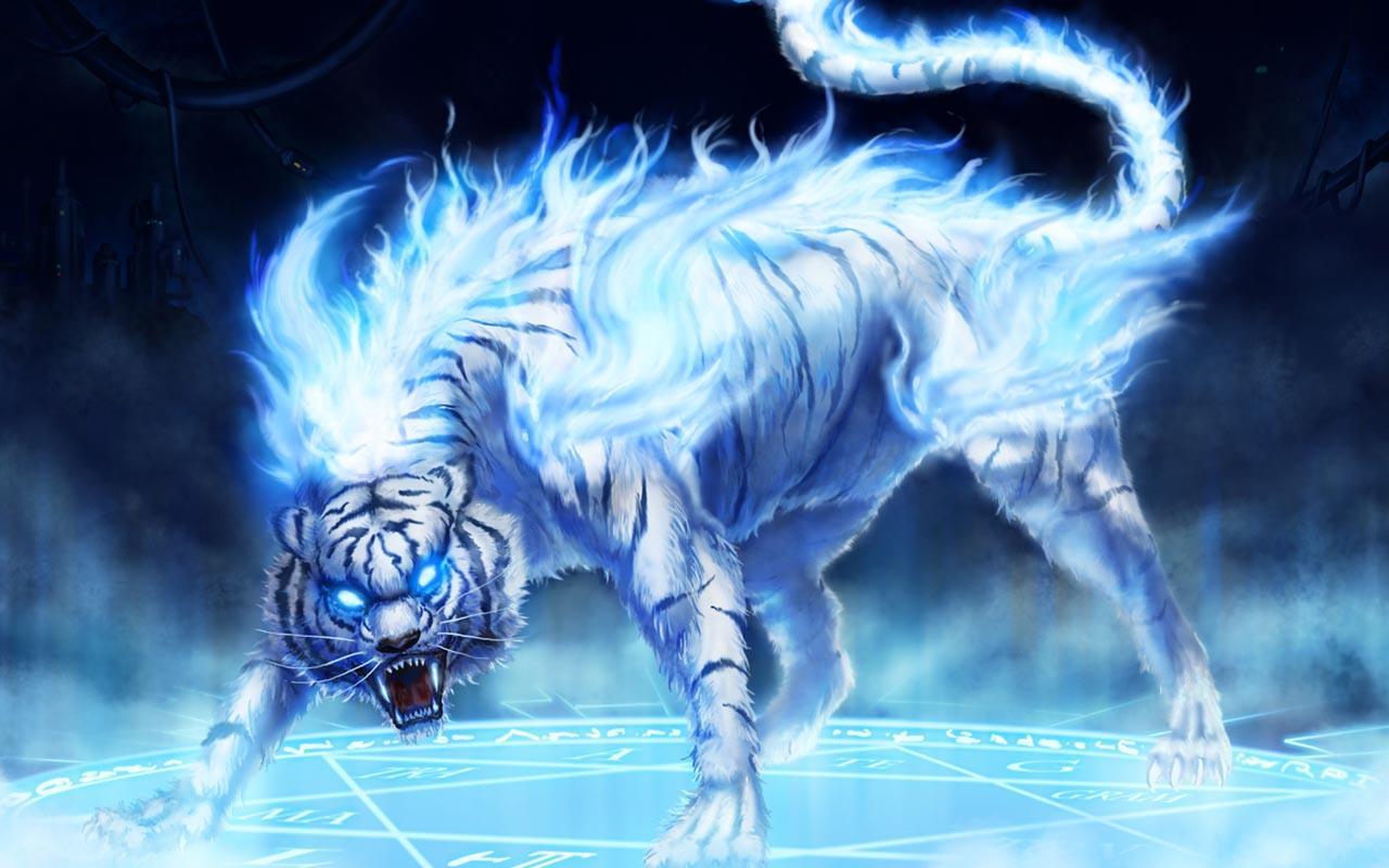 nouvelle race de tigre - Photos Humour