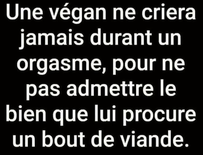 https://www.piecejointe.com/stock/201802/Une-vegan-ne-criera-jamais.jpg