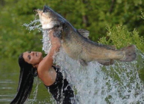 Photos Humour : ce doit être jouissif