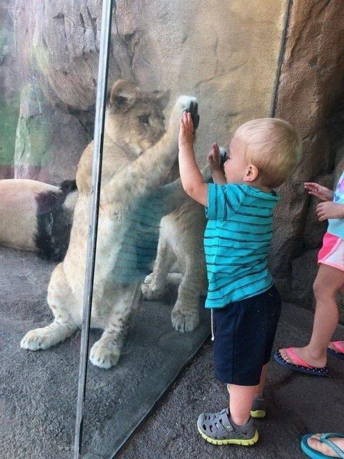 Photos Humour : Donne moi ta main  ? ...