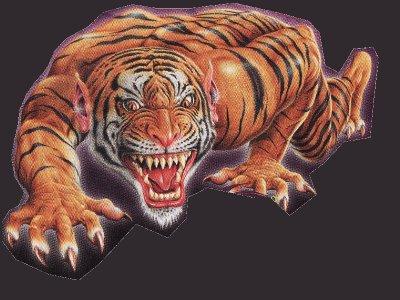 Photos Humour : homme tigre