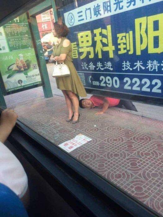 Photos Humour : Un gros cochon