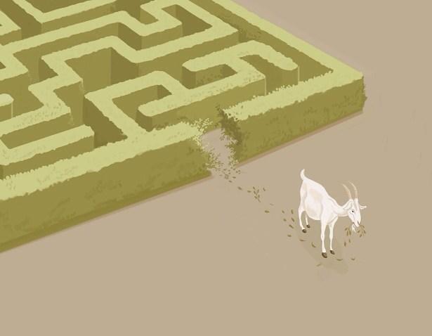 Photos Humour : Une chèvre dans un labyrinthe