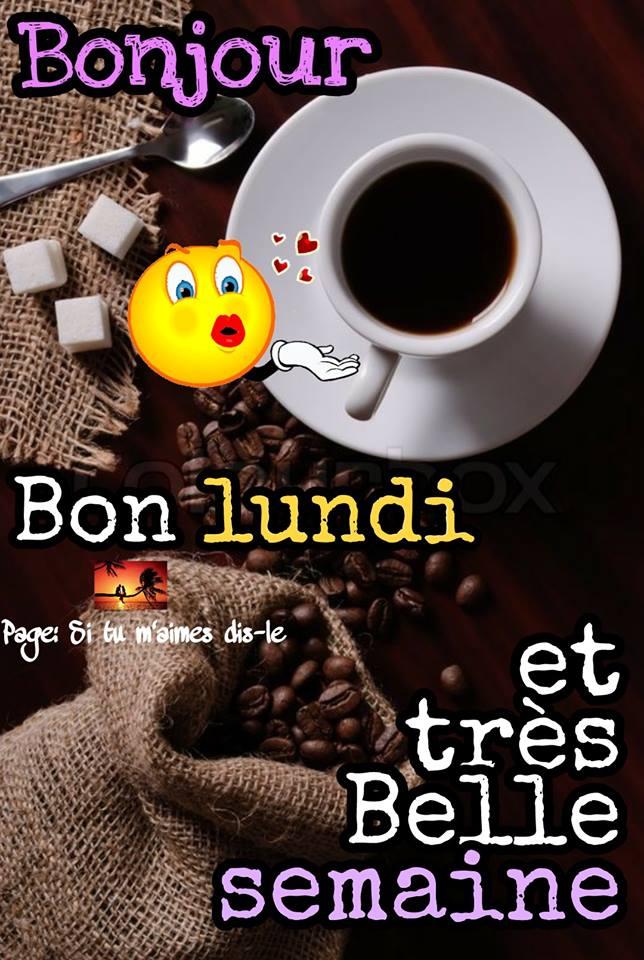 Photos Humour : Bonjour - Bon lundi et très Belle semaine