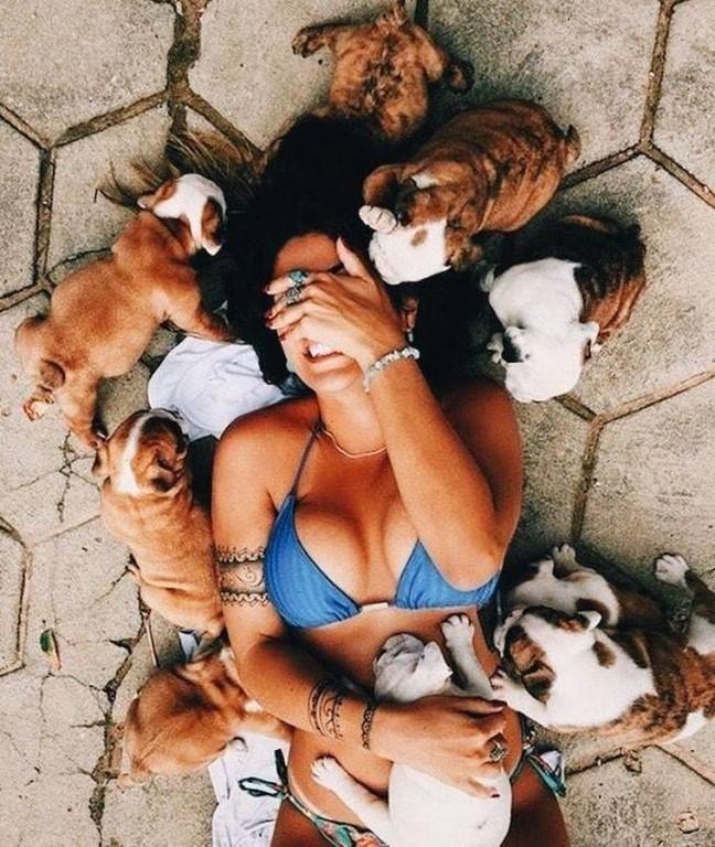 Photos Humour : Vie de chien