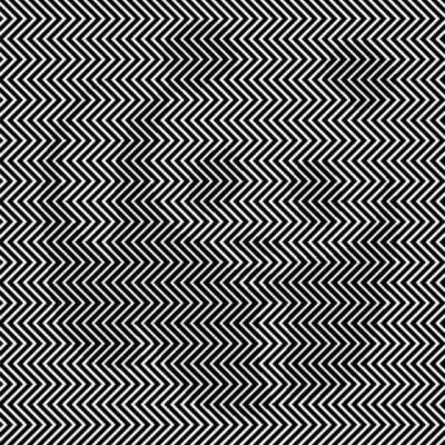 Photos Humour : illusion optique panda
