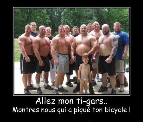 Photos Humour : vol
