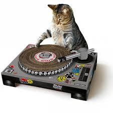 Photos Humour :  Attention la DJ Bichette,