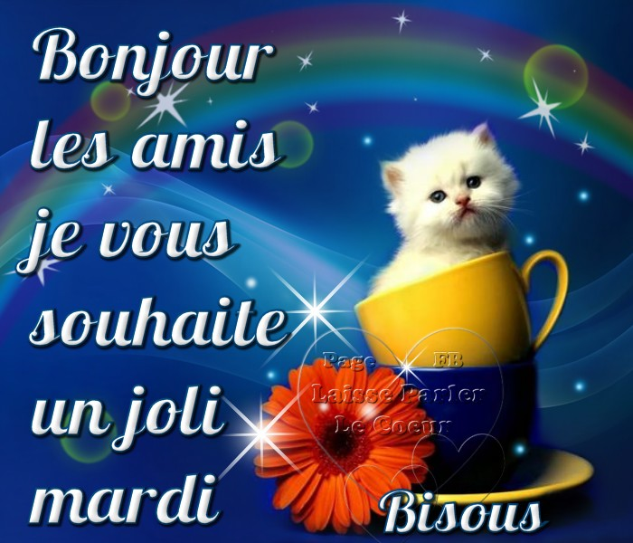 Bonjour Les Amis Je Vous Souhaite Un Joli Mardi Photos Humour