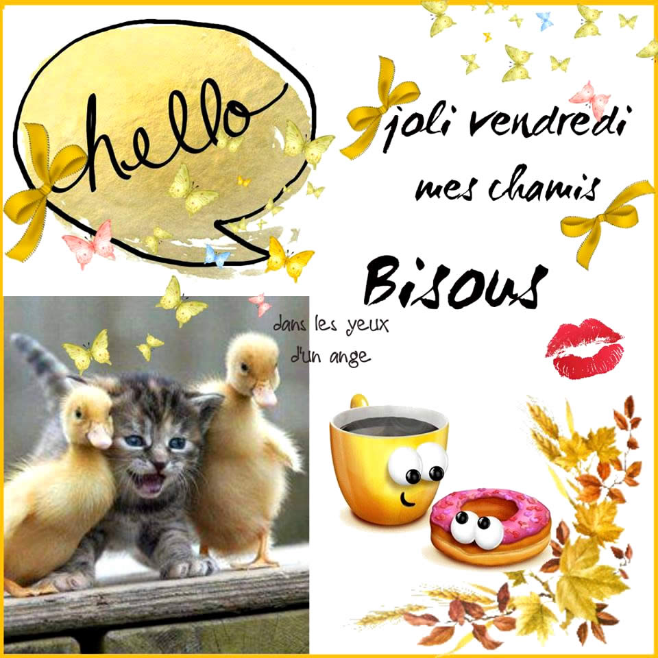 Photos Humour : Hello - Joli vendredi mes chamis
