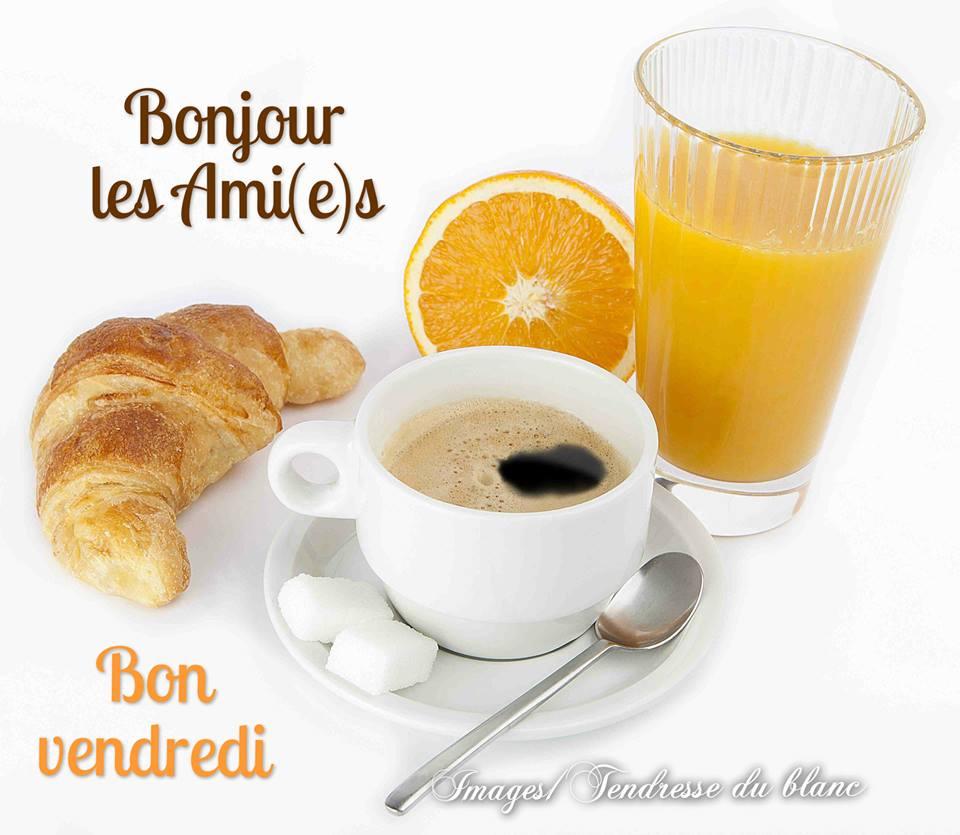 Photos Humour : Bonjour Les Ami(e)s - Bon Vendredi