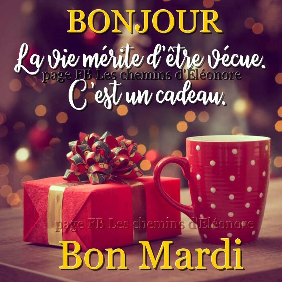 Photos Humour : Bonjour - La vie mérite d