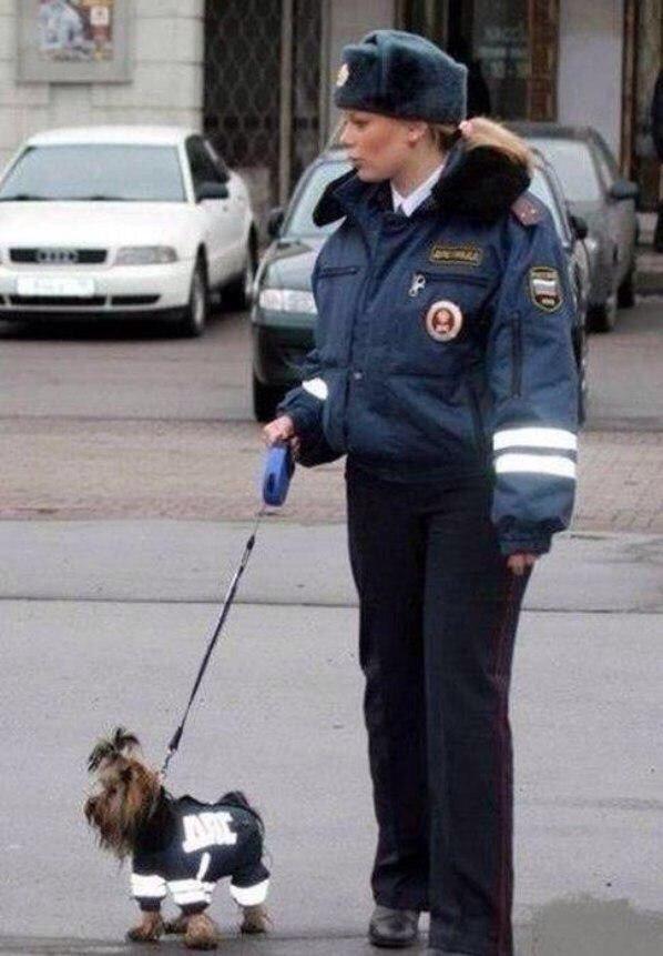 Photos Humour : Brigade cynophile Russe