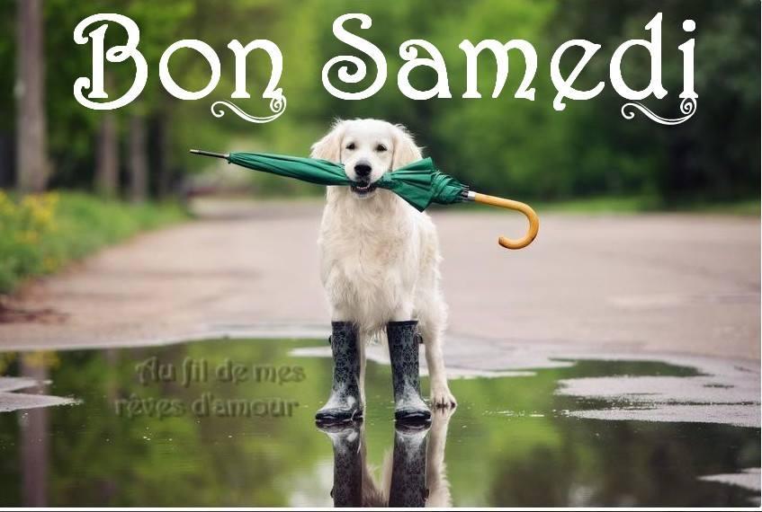 Photos Humour : Bon Samedi