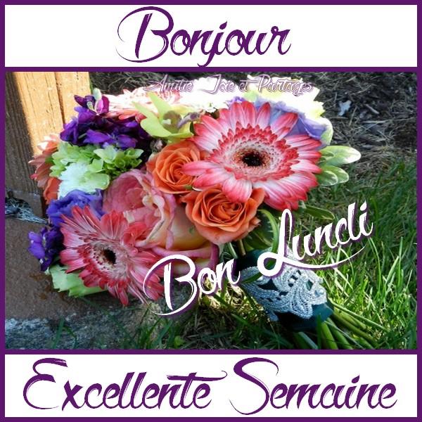 Photos Humour : Bonjour Bon Lundi - Excellente Semaine