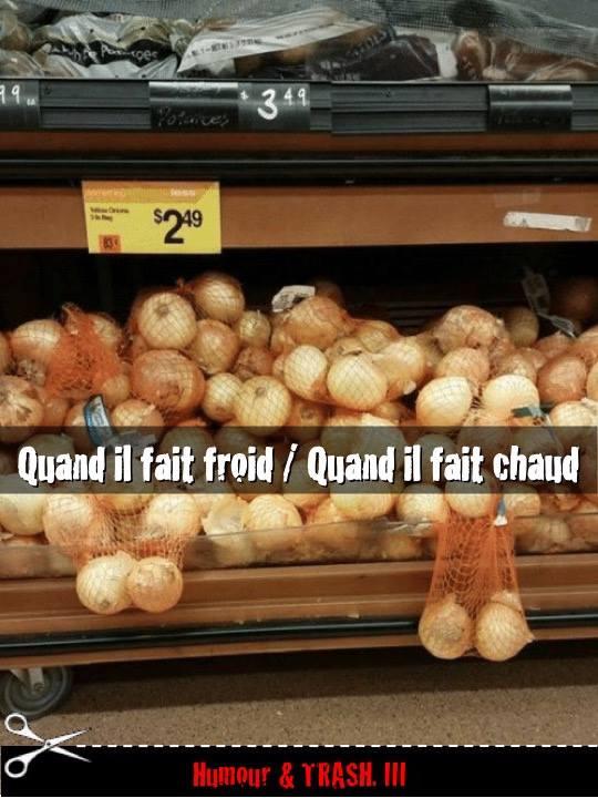 Photos Humour : drôle de vie