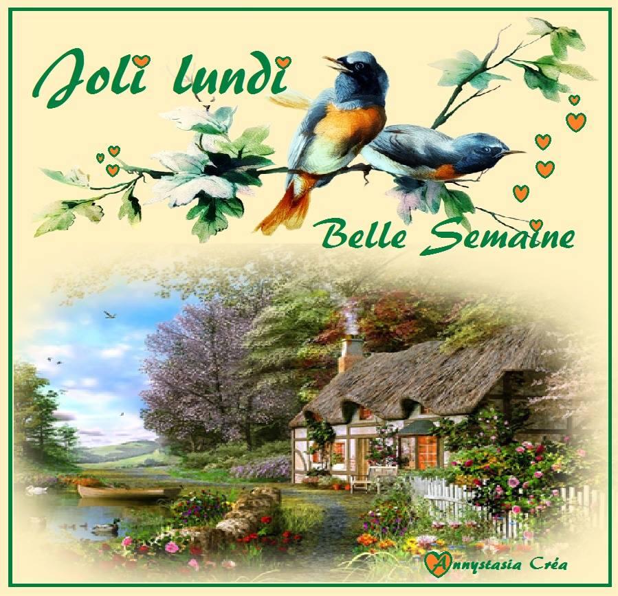 Photos Humour : Joli Lundi - Belle semaine