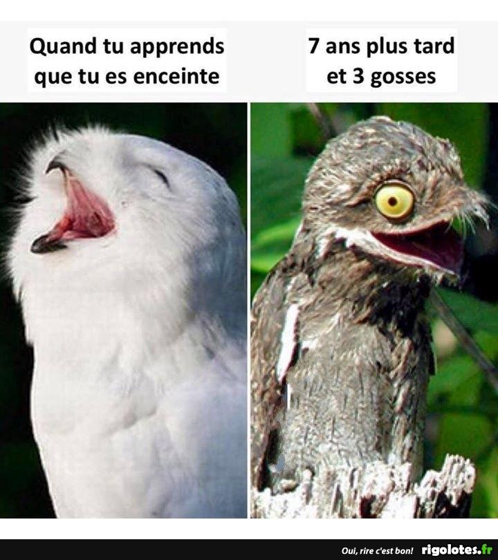 Photos Humour : les mômes