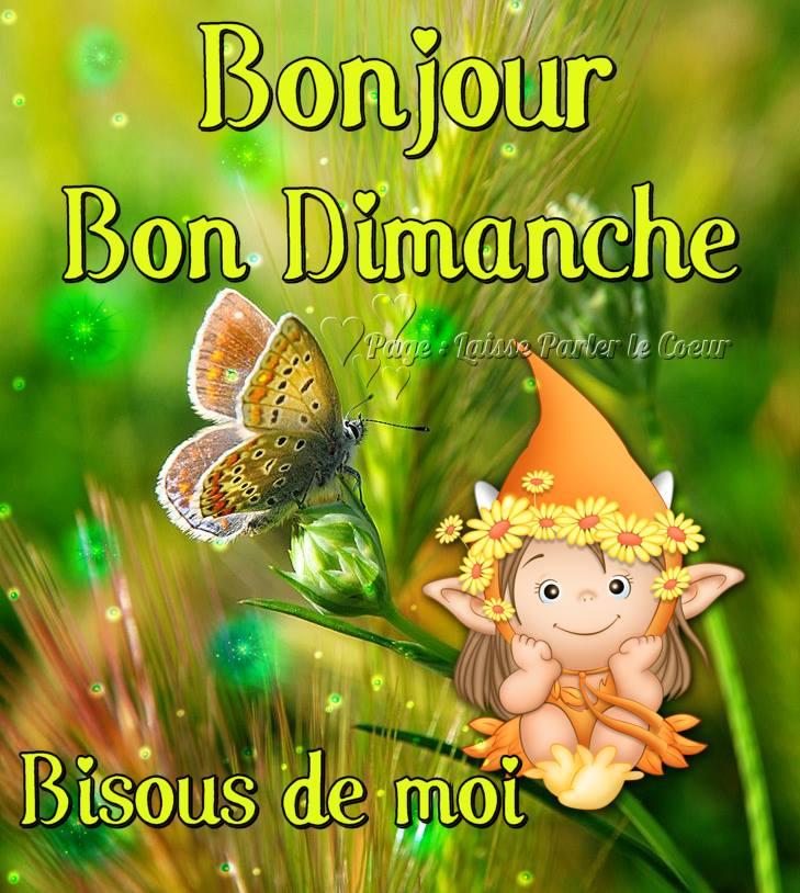 Photos Humour : Bonjour Bon Dimanche - Bisous de moi