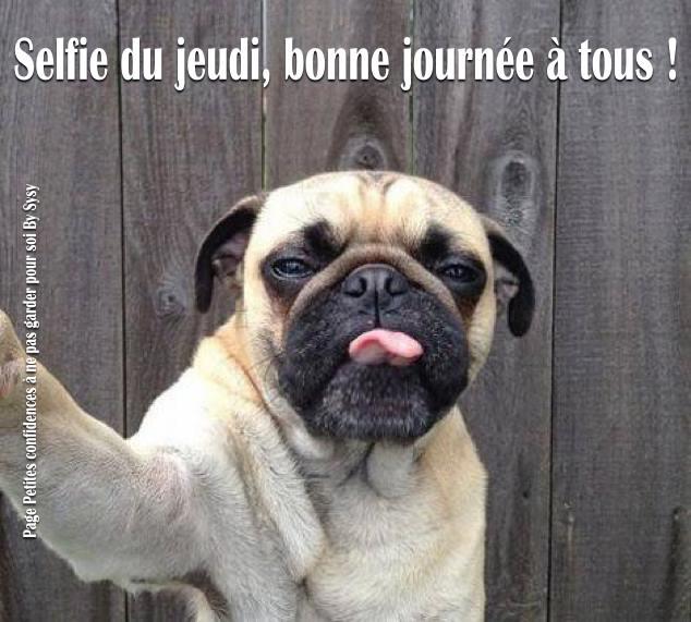 Photos Humour : Selfie du jeudi, bonne journée à tous !