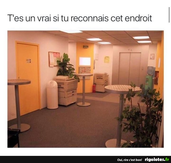 Photos Humour : excellente série