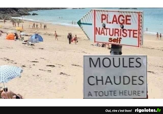 Photos Humour : moules
