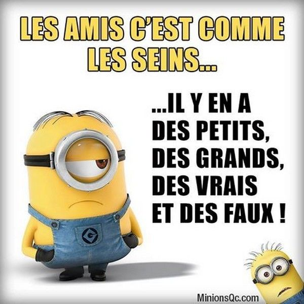 Photos Humour : Les amies(is) sont !!!