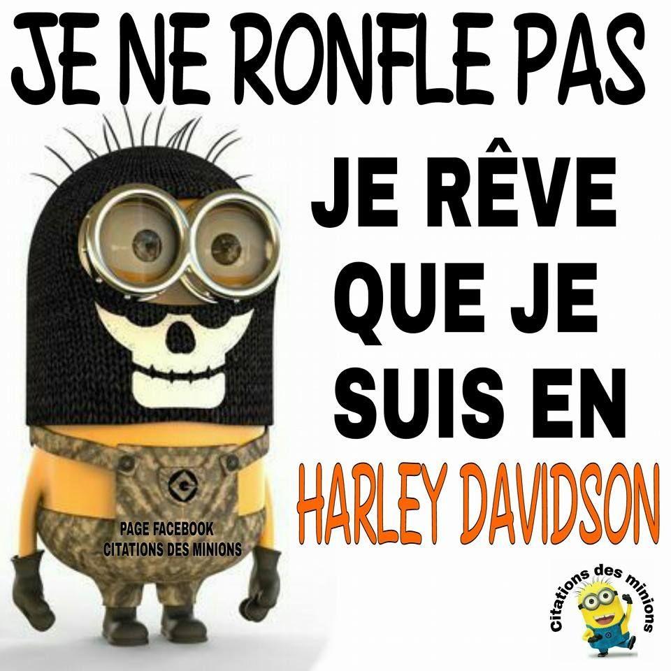 Photos Humour : Je ne ronfle pas je rêve que je suis en Harley Dav