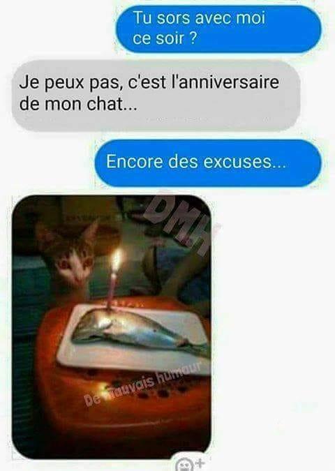 Photos Humour : Bon anniversaire