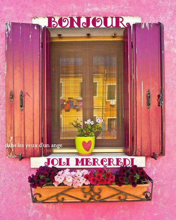 Photos Humour : Bonjour Joli Mercredi