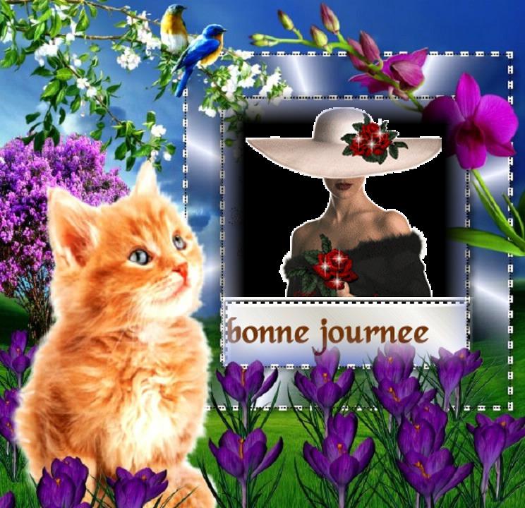 Photos Humour : Bonjour bichette