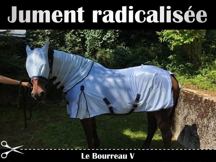 Photos Humour : pas possible