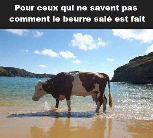 Photos Humour : beurre salé