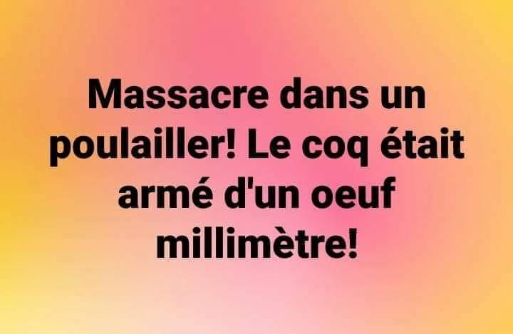 Photos Humour : massacre