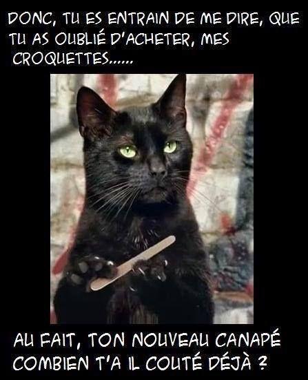 Photos Humour : message pour Michel