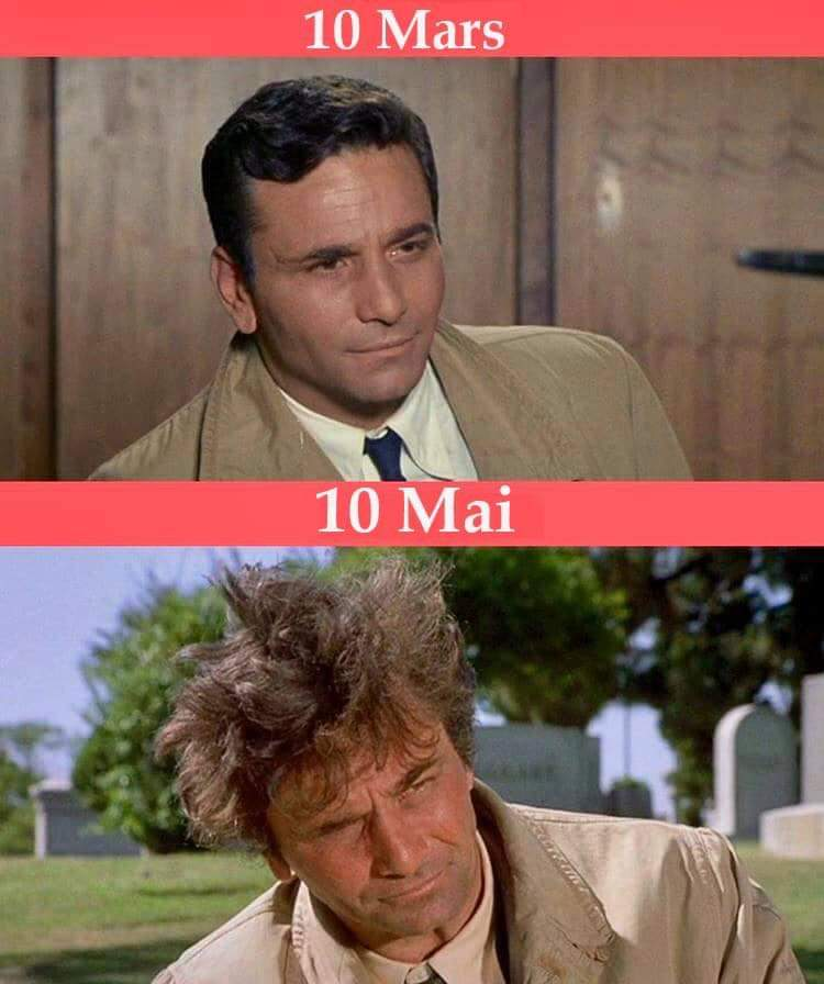 Photos Humour : Le coiffé décoiffé ...