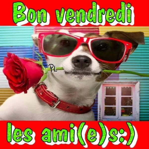 Photos Humour : Bon vendredi les ami(e)s PJ