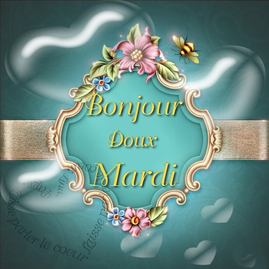 Photos Humour : Bonjour, Doux Mardi (02)