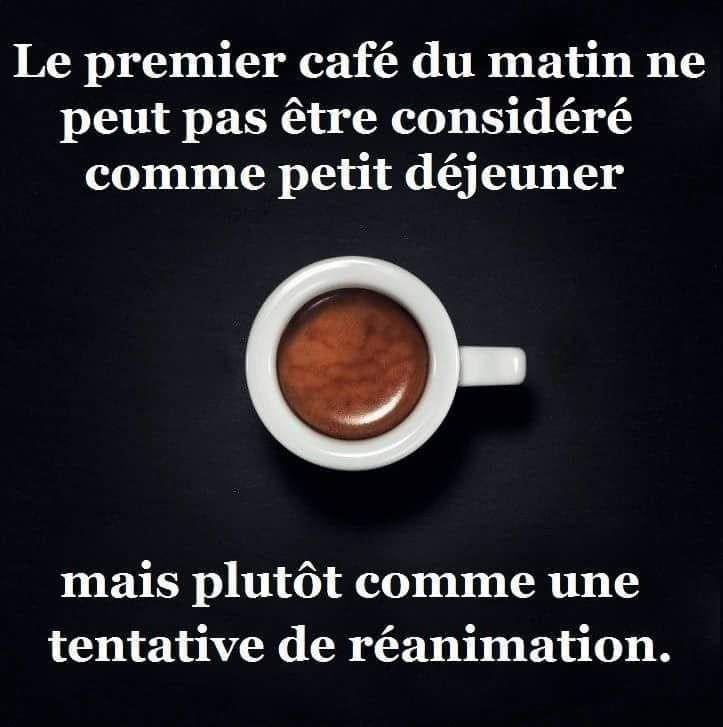 Photos Humour : Le premier café du matin ne peut pas être considéré