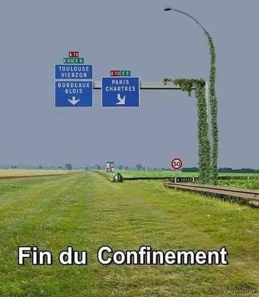 Photos Humour : Fin du confinement