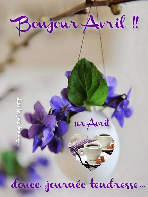 Photos Humour : Bonjour Avril !! 1er Avril douce journée tendress