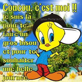 Photos Humour :  Coucou
